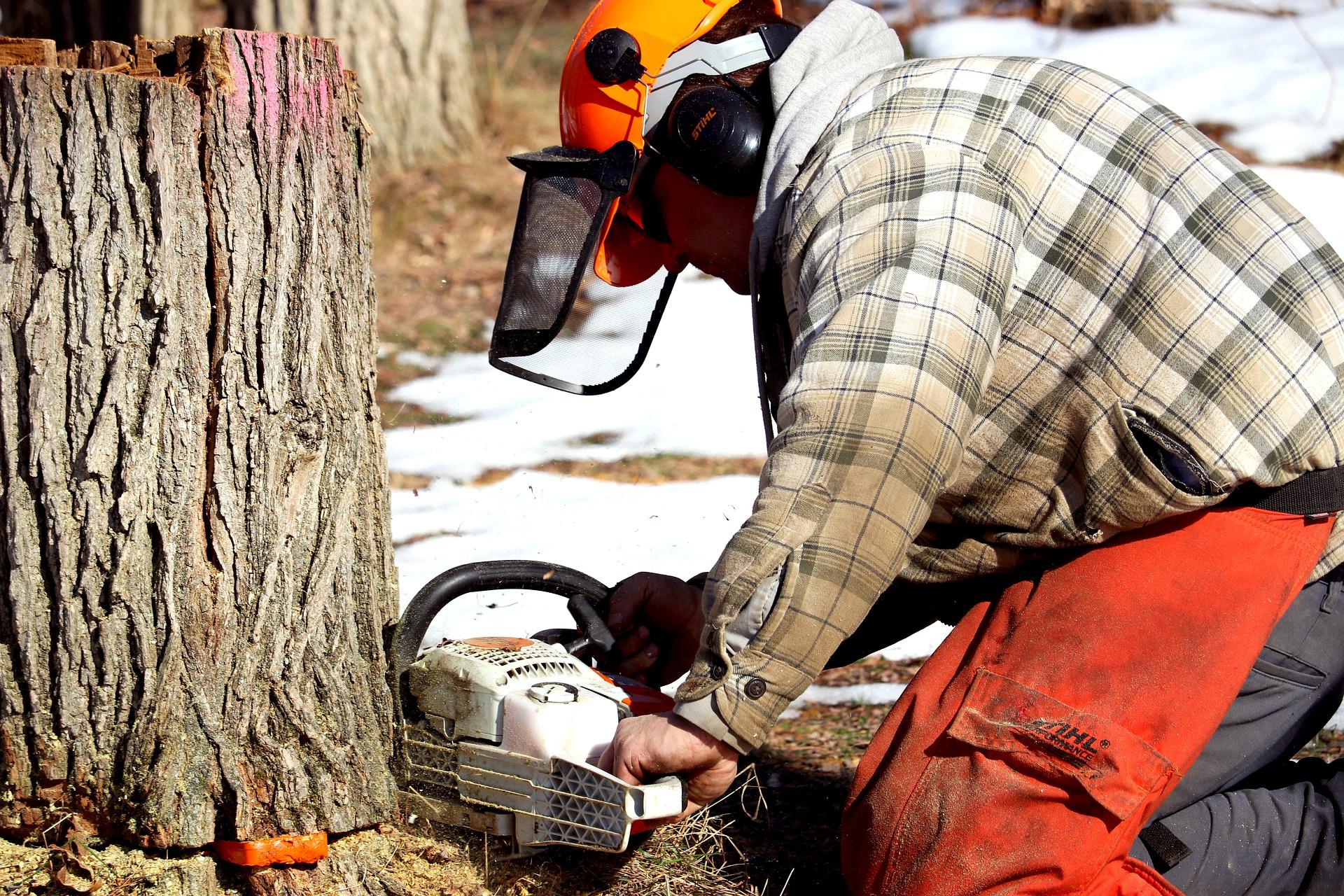 chainsaw-6076170_1920